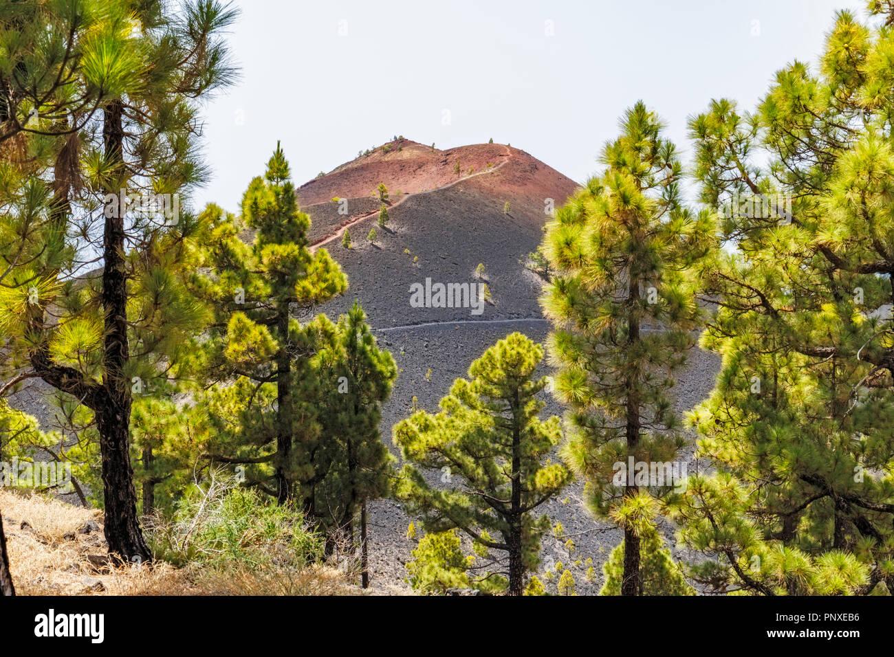 Vulkanische Landschaft entlang der Ruta de los Volcanes, schönen Wanderweg über die Vulkane, La Palma, Kanarische InselnStockfoto