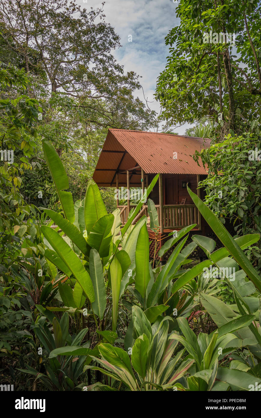 Guesthouse-Tortuguero aninga Evergreen Lodge, Nationalpark, Costa Rica Stockbild