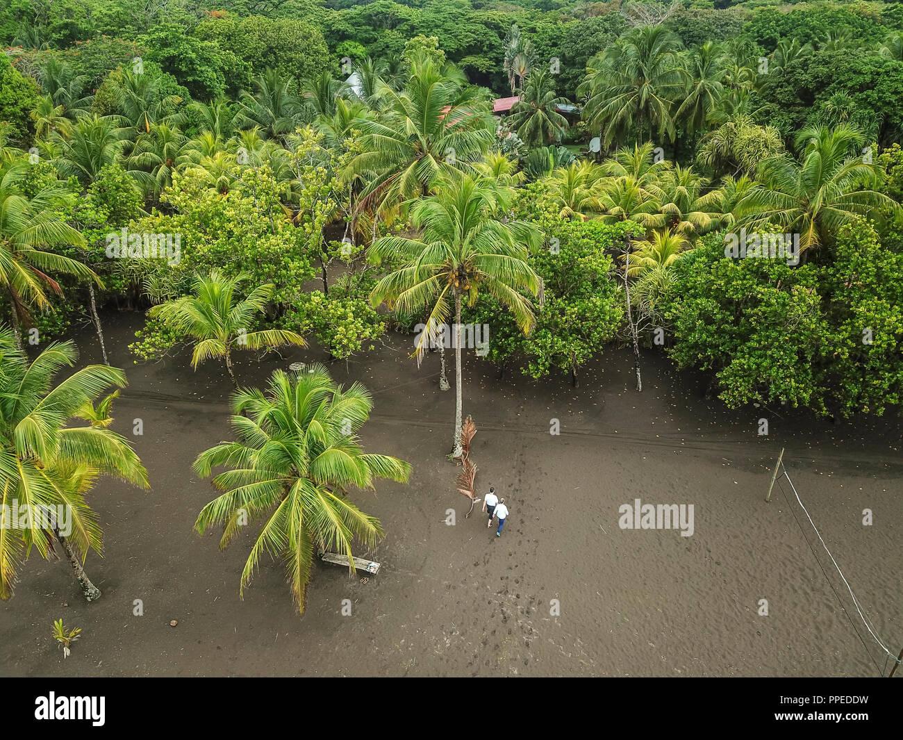 Nationalpark Tortuguero, Costa Rica Stockbild