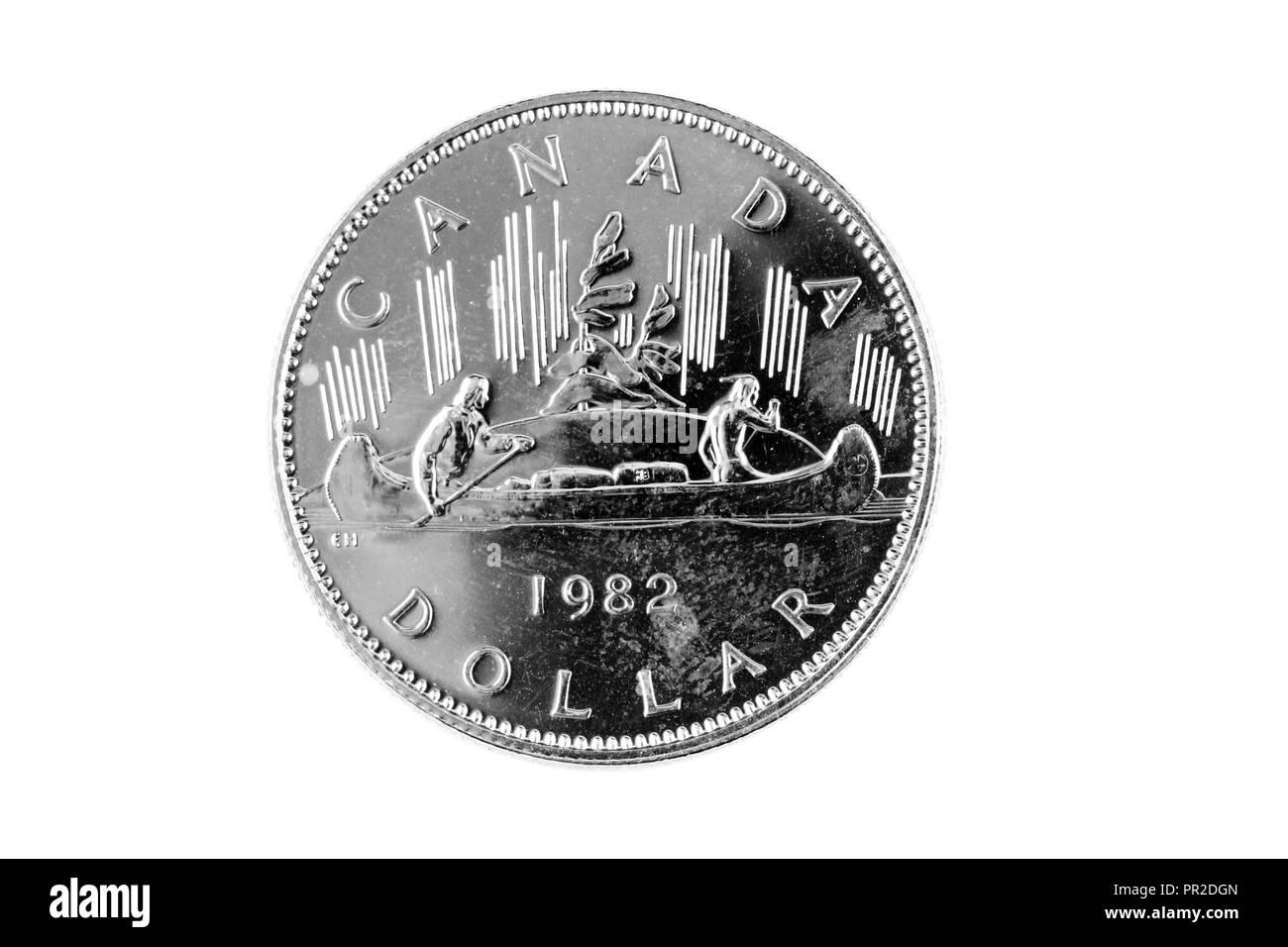 Kanadische Ein Dollar Münze Stockfotos Kanadische Ein Dollar Münze