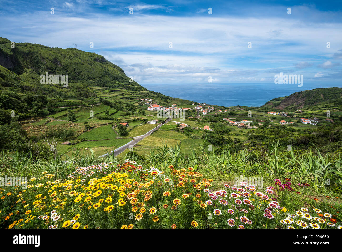 Grüne Küste der Insel Flores, Azoren, Portugal Stockbild