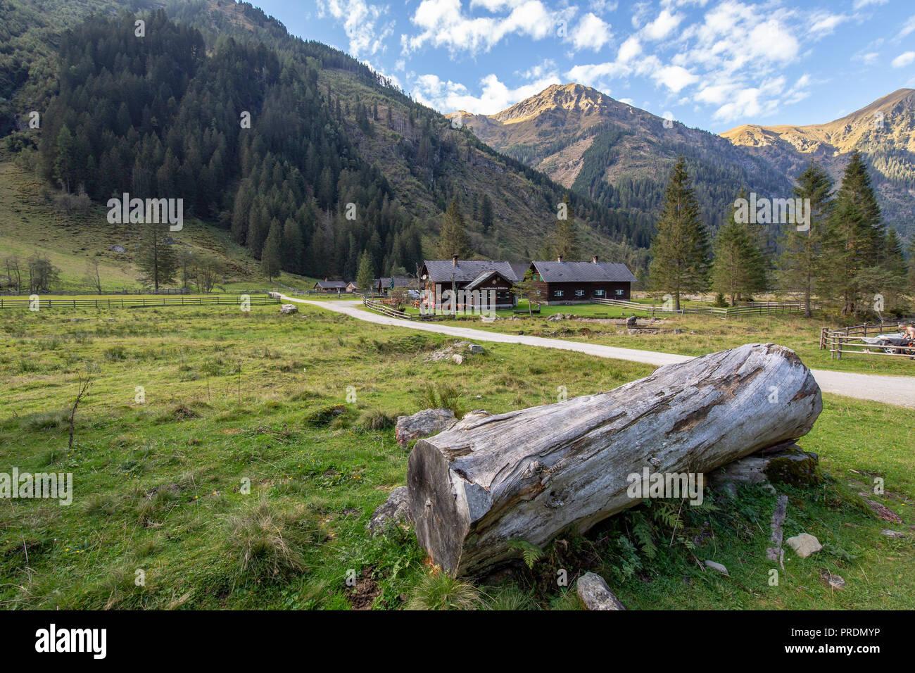 Almlandschaft im Herbst, Sölktal, Steiermark, Österreich Stockbild