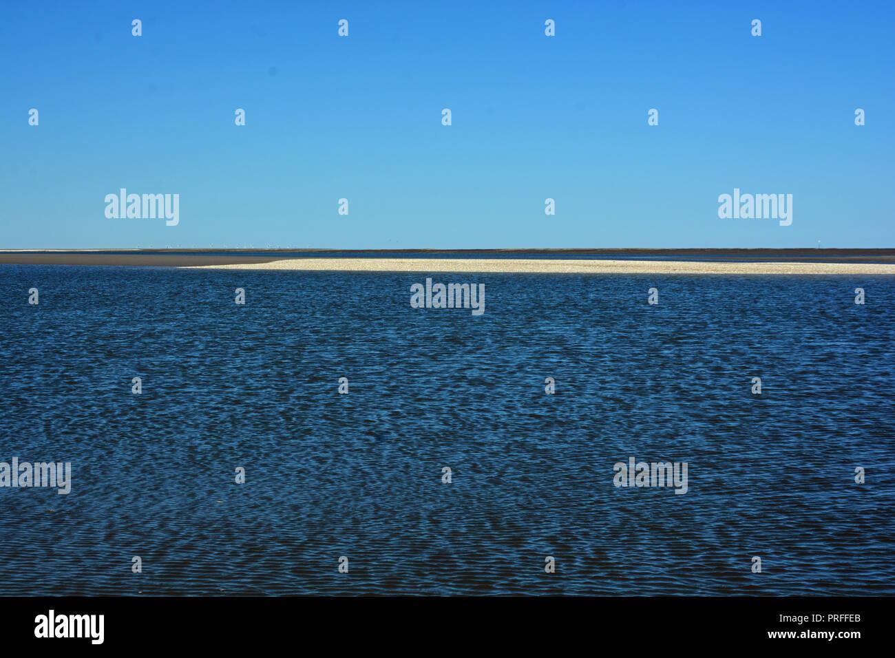 Wattenmeer Muschelbank Hintergrund Stockbild