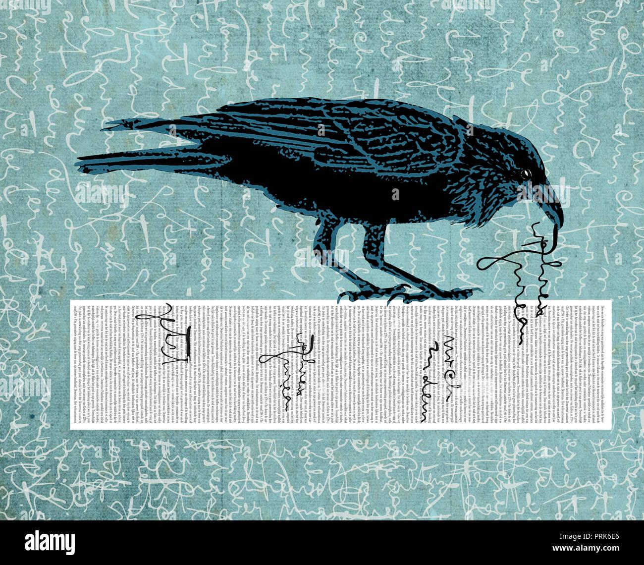 Raven stiehlt Text kopieren aus Stockbild