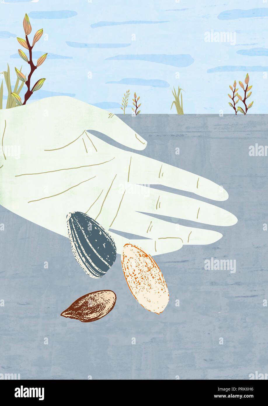 Eine Hand, sät sie die Saat, die über das Land Stockbild