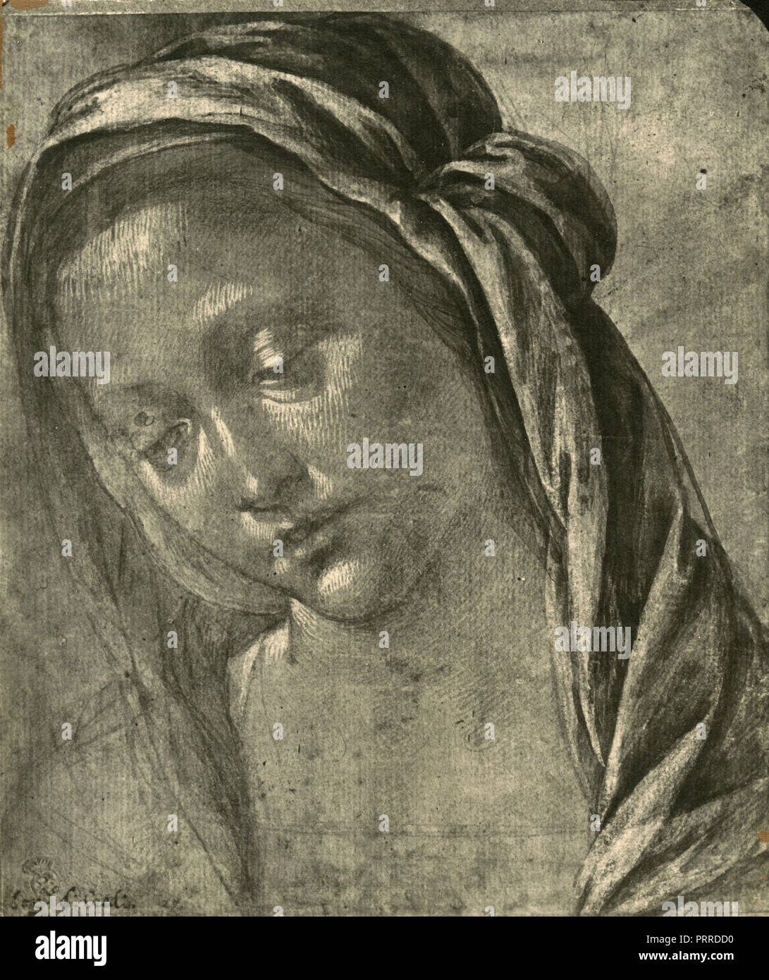 Madonna Kopf Studien, Zeichnung von Lorenzo di Credi, 1920er Jahre Stockbild
