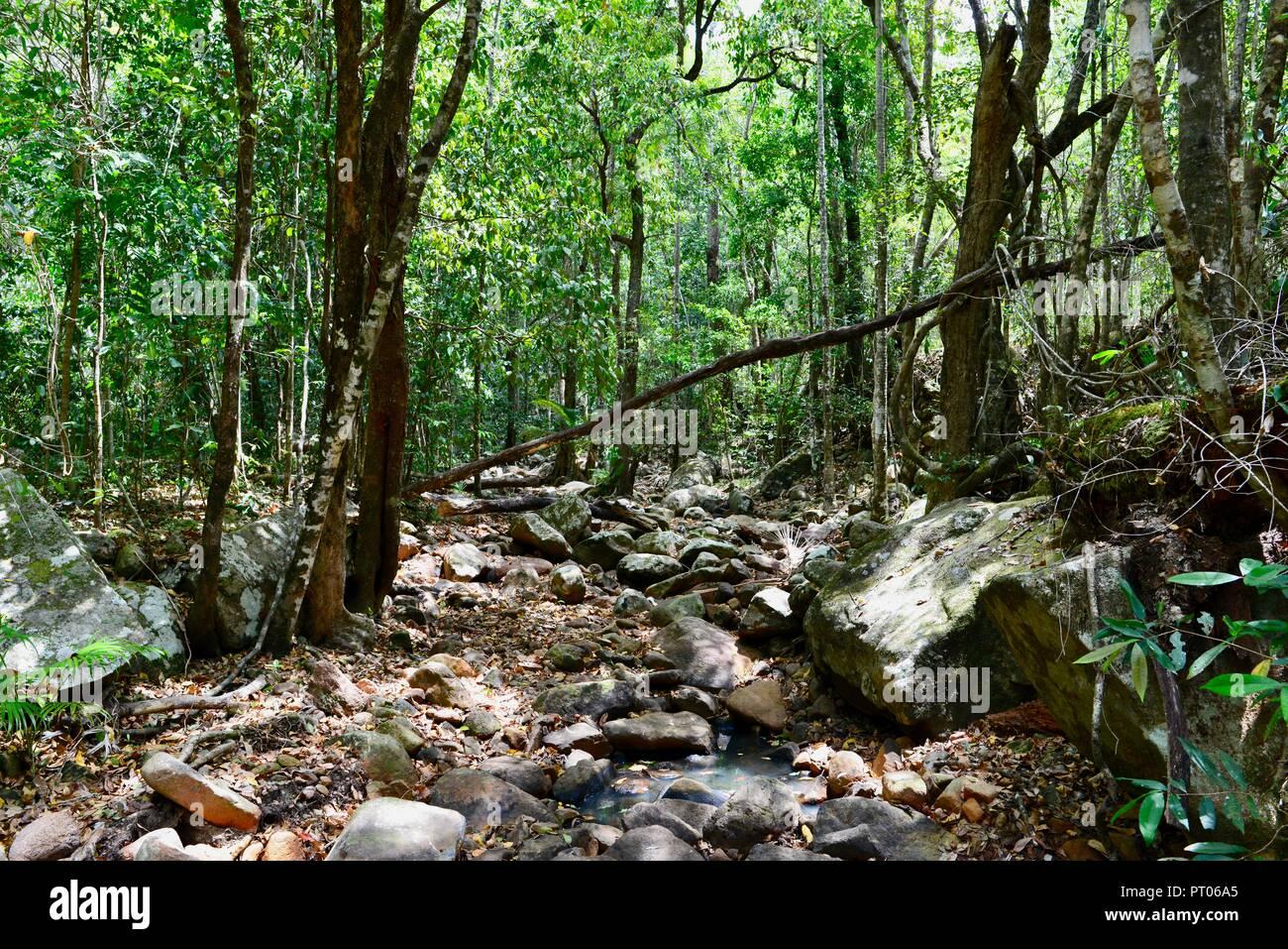 Dry Creek Bed von Dämpfer Creek, Dalrymple Lücke, QLD, Australien Stockbild