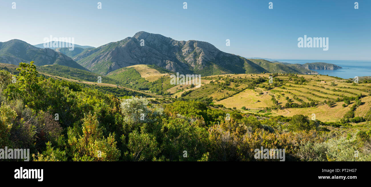 Landschaft bei D'ARONE, Korsika, Frankreich Stockbild