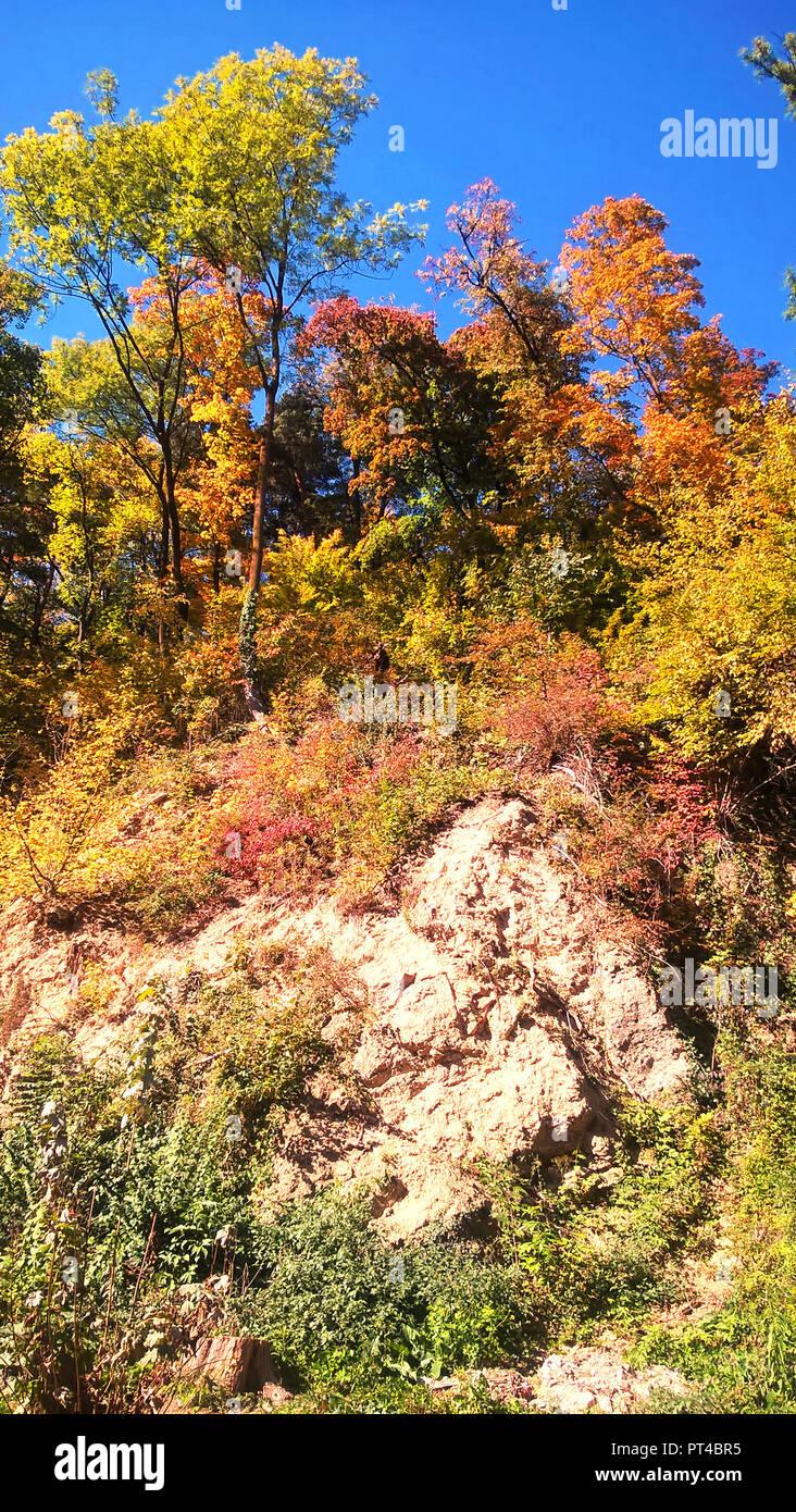 Herbst Farbpalette Stockfotos Herbst Farbpalette Bilder Alamy
