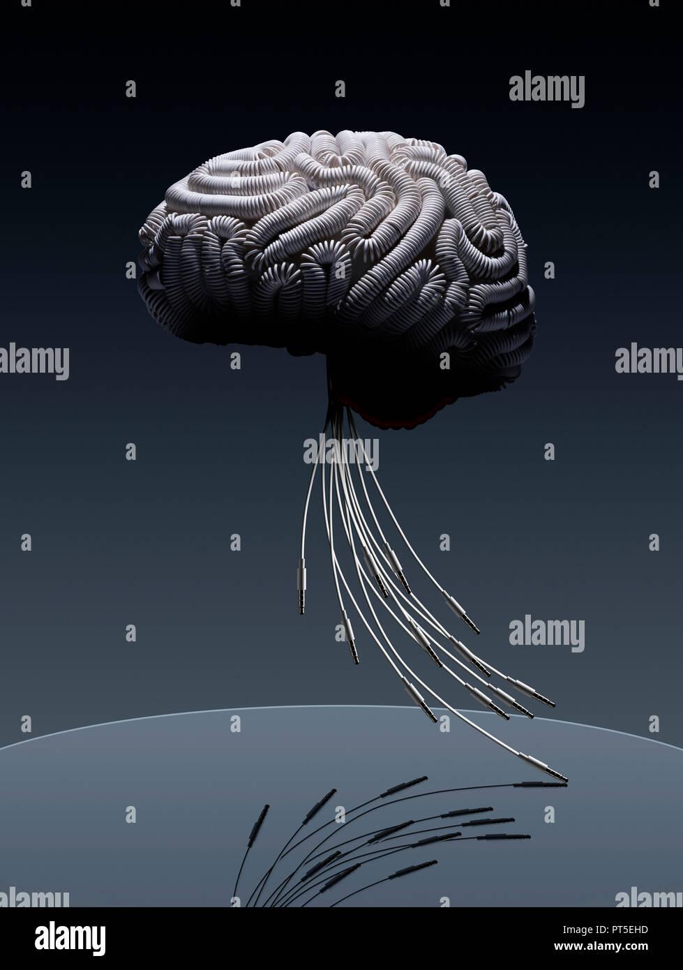 Konzept Gehirn durch weiße Kabel angeschlossen, Stammzellen aus Jack Stecker, Kabel, Anschlüsse Stockbild