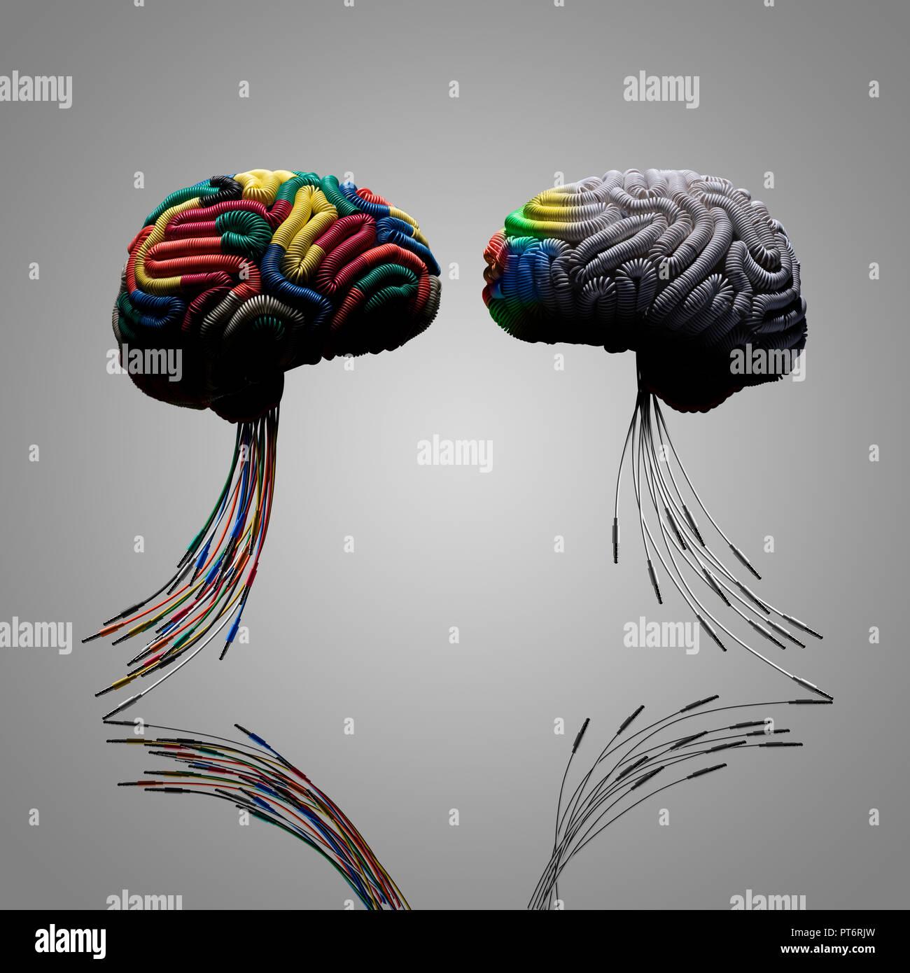 Konzept 2 zwei Gehirne, eine Verbindung von Farbe, Drähte, Stammzellen aus Klinkenstecker, verdrahtet, Verbindung, Vernetzung, verdrahtet, Lernen, Lehren, Influenc Stockbild