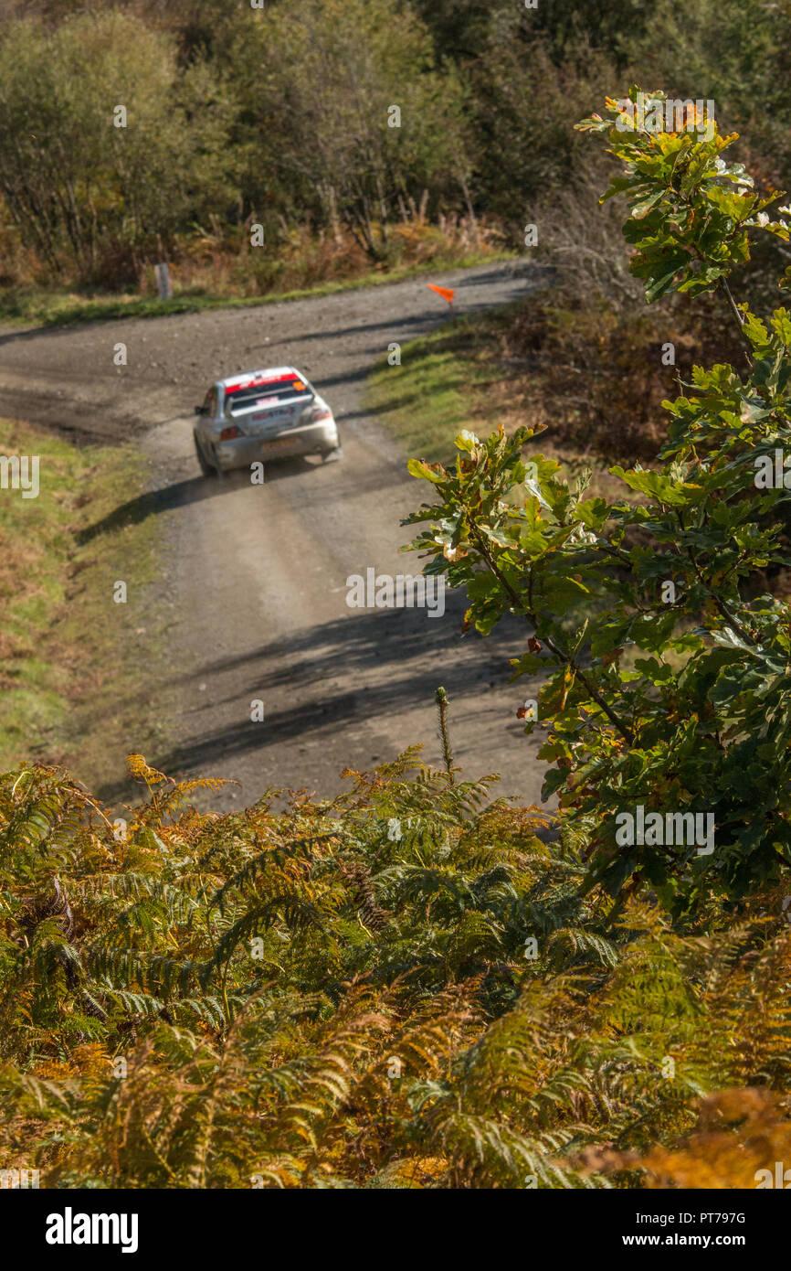 Dyfnant, UK. 6. Oktober 2018. Der Wald um Dyfnant bieten die spektakuläre Kulisse mit Stufe 14 der 2018 Dayinsure Wales Rally von Großbritannien, der 11. Runde des 2018 Credit: Mike Hillman/Alamy leben Nachrichten Stockbild