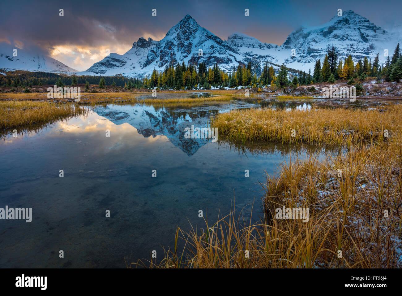 Mount Assiniboine Provincial Park ist ein Provincial Park in British Columbia, Kanada, um Mount Assiniboine gelegen. Der Park wurde 1922 gegründet. S Stockbild