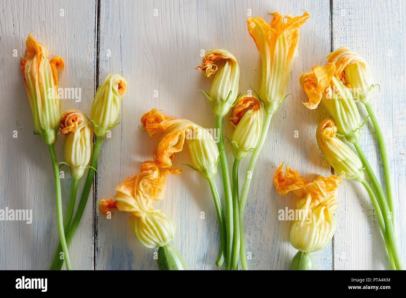 Zucchiniblüten auf hölzernen Hintergrund Stockbild