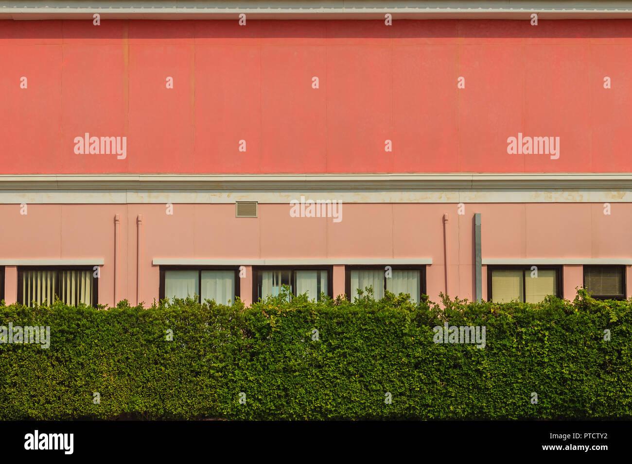 Hecke Zaun Wand Vor Dem Burogebaude Grune Blatter Zaun Gegen