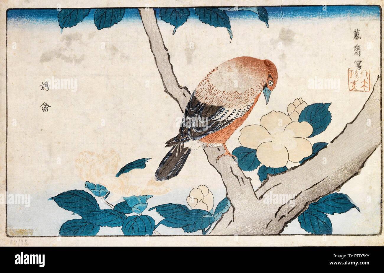 Kitao Masayoshi, Untitled, ca. Anfang des 19. Jahrhunderts, Holzschnitt auf Papier, Museum der Schönen Künste von Bilbao, Bilbao, Spanien. Stockbild
