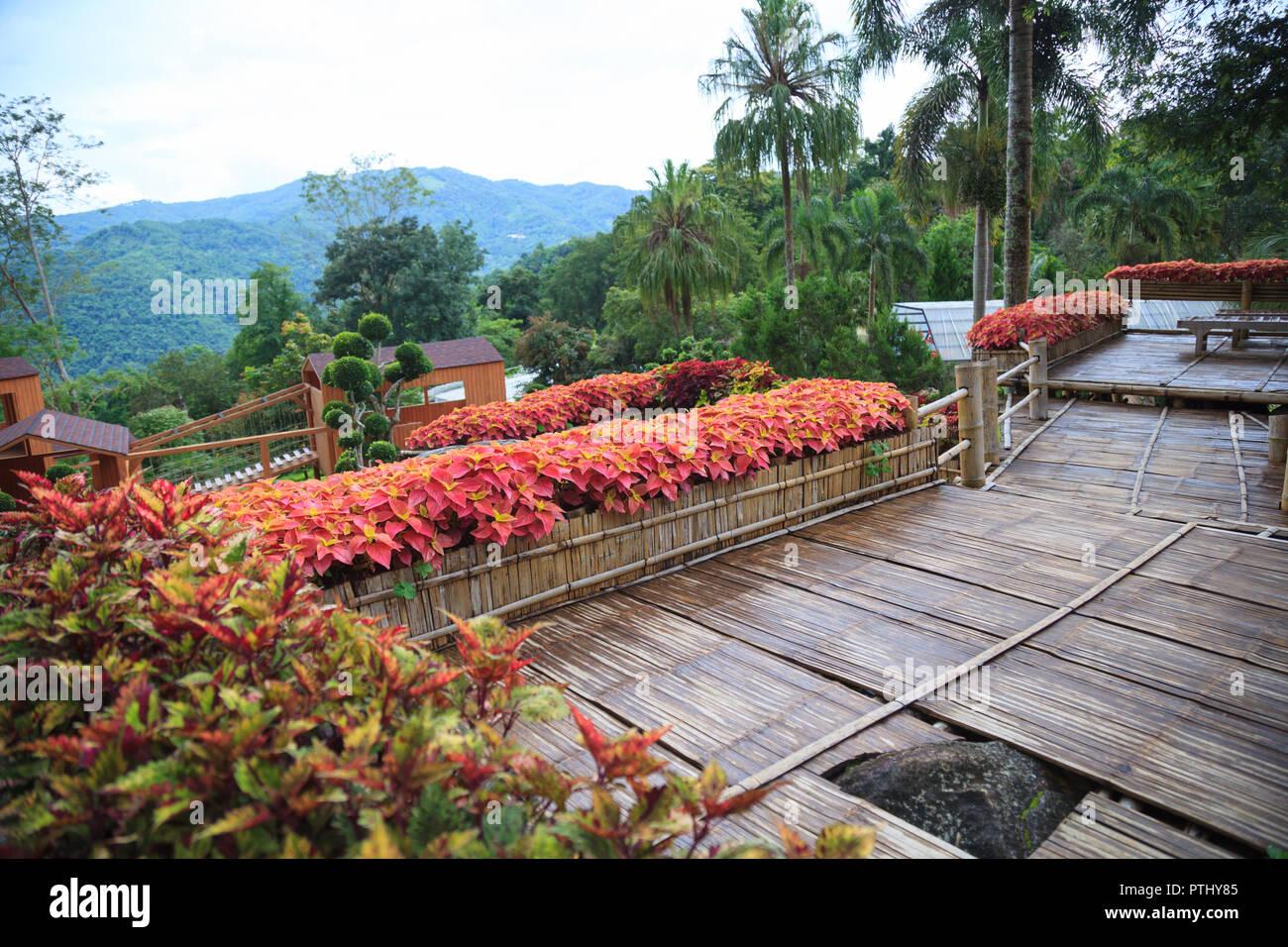 Tropischen Landlichen Haus Garten Bambus Holz Balkon Terrasse Mit