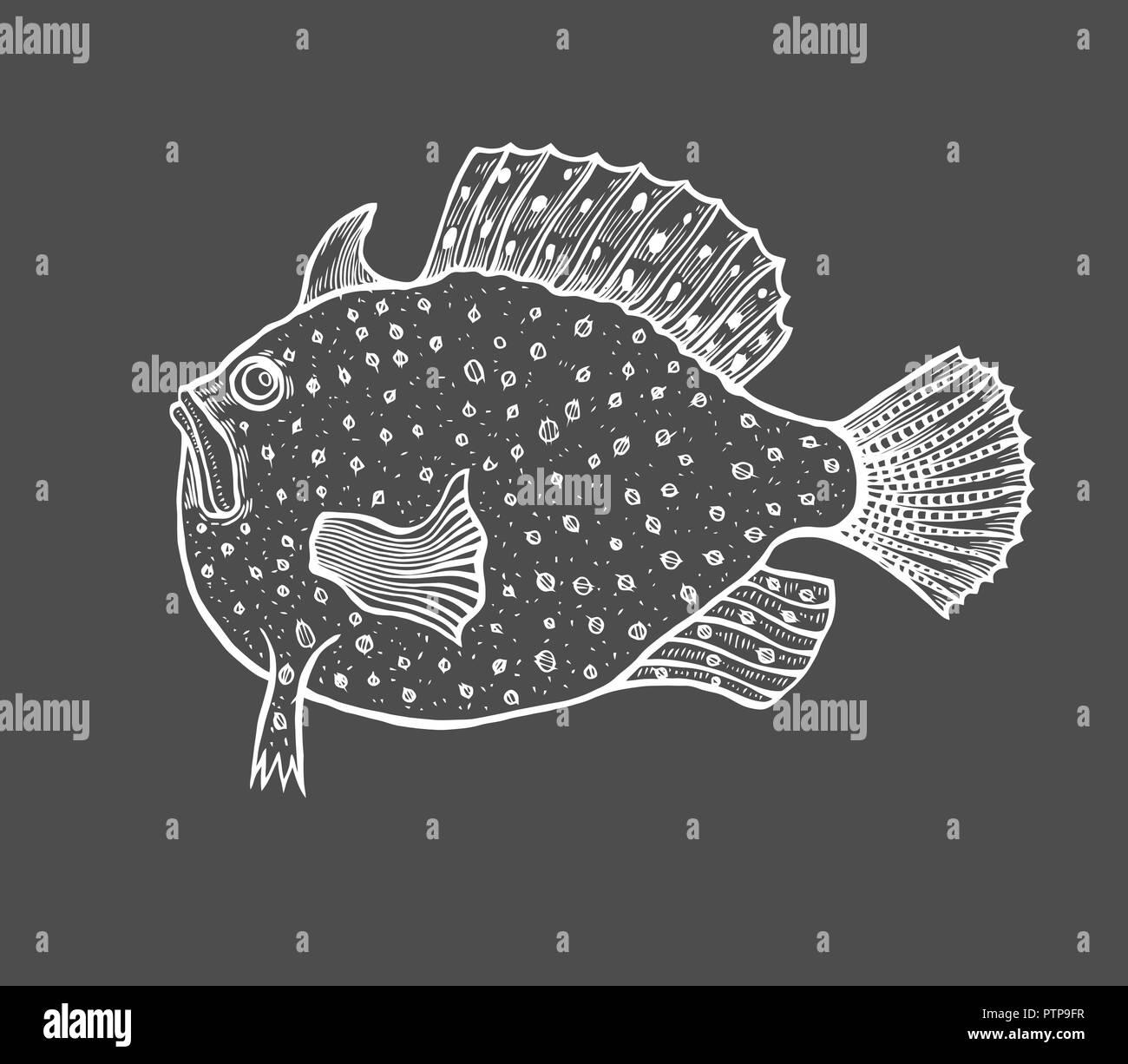 Lustige Fisch Skizze Stil Malbuch Für Erwachsene Und Kinder