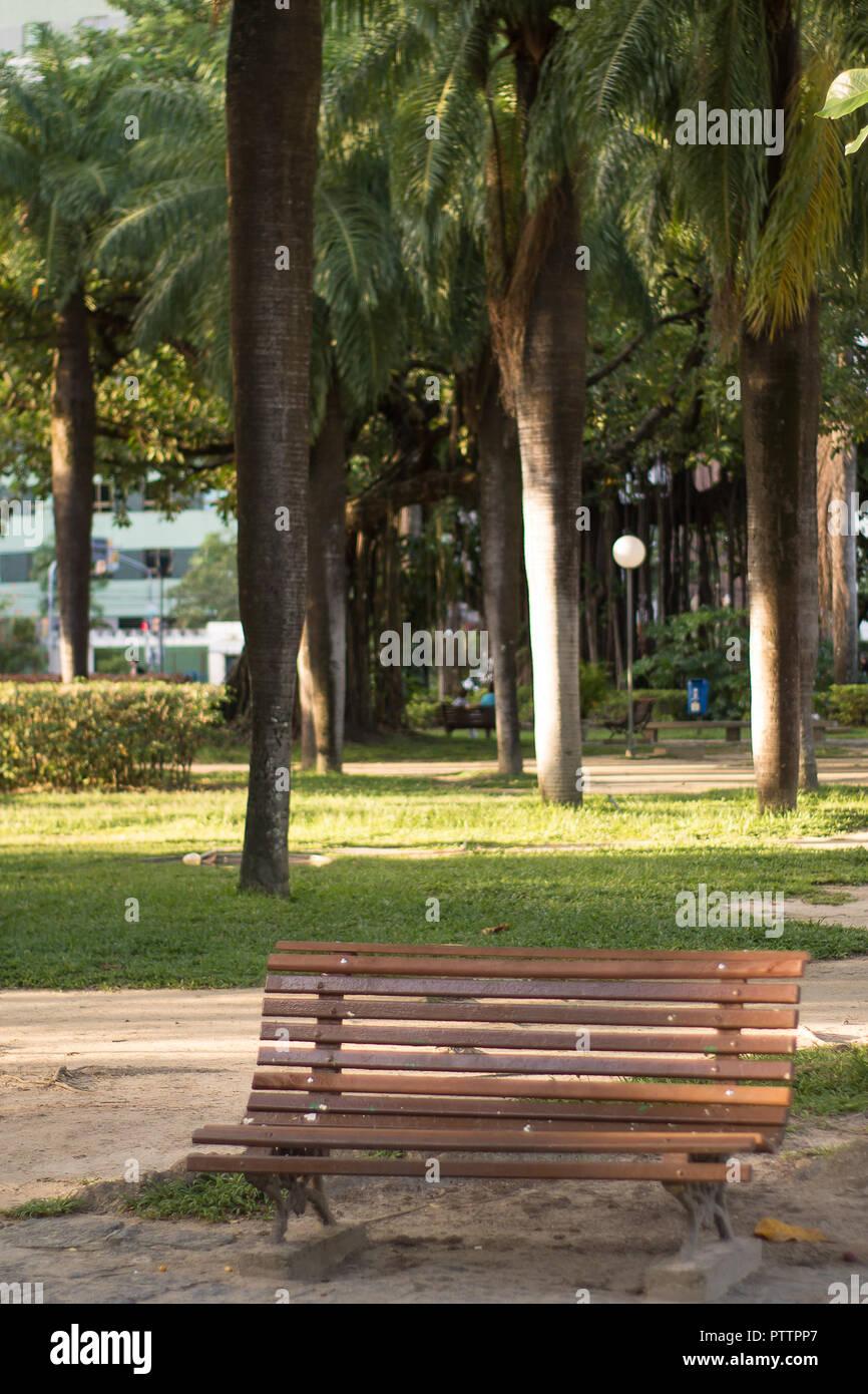Parkbank in einem Herbst Tag. Stockbild