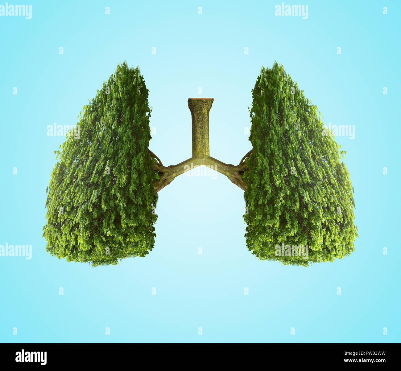 Konzept Zwei 2 Bäume ein paar Lungen, Luftqualität, Luftverschmutzung, Klimawandel, globale Warnung ähneln Stockbild