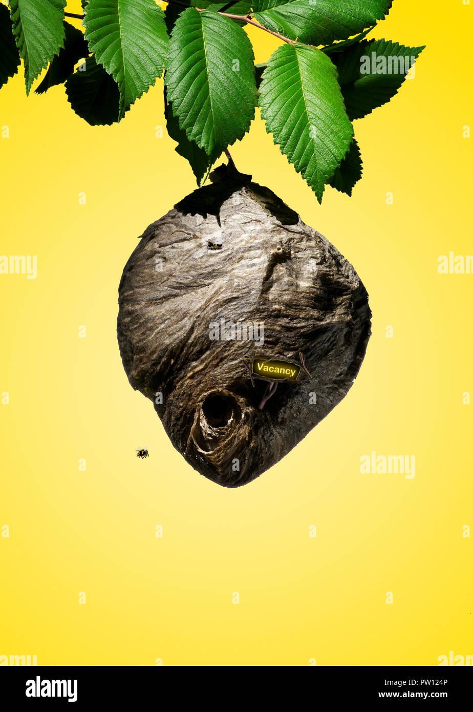 Konzept Bienenstock mit einem Schild Vakanz, Struktur, Nest, fehlende Bienen, Verschwinden Bienen, CCD, Colony Collapse Disorder Stockbild