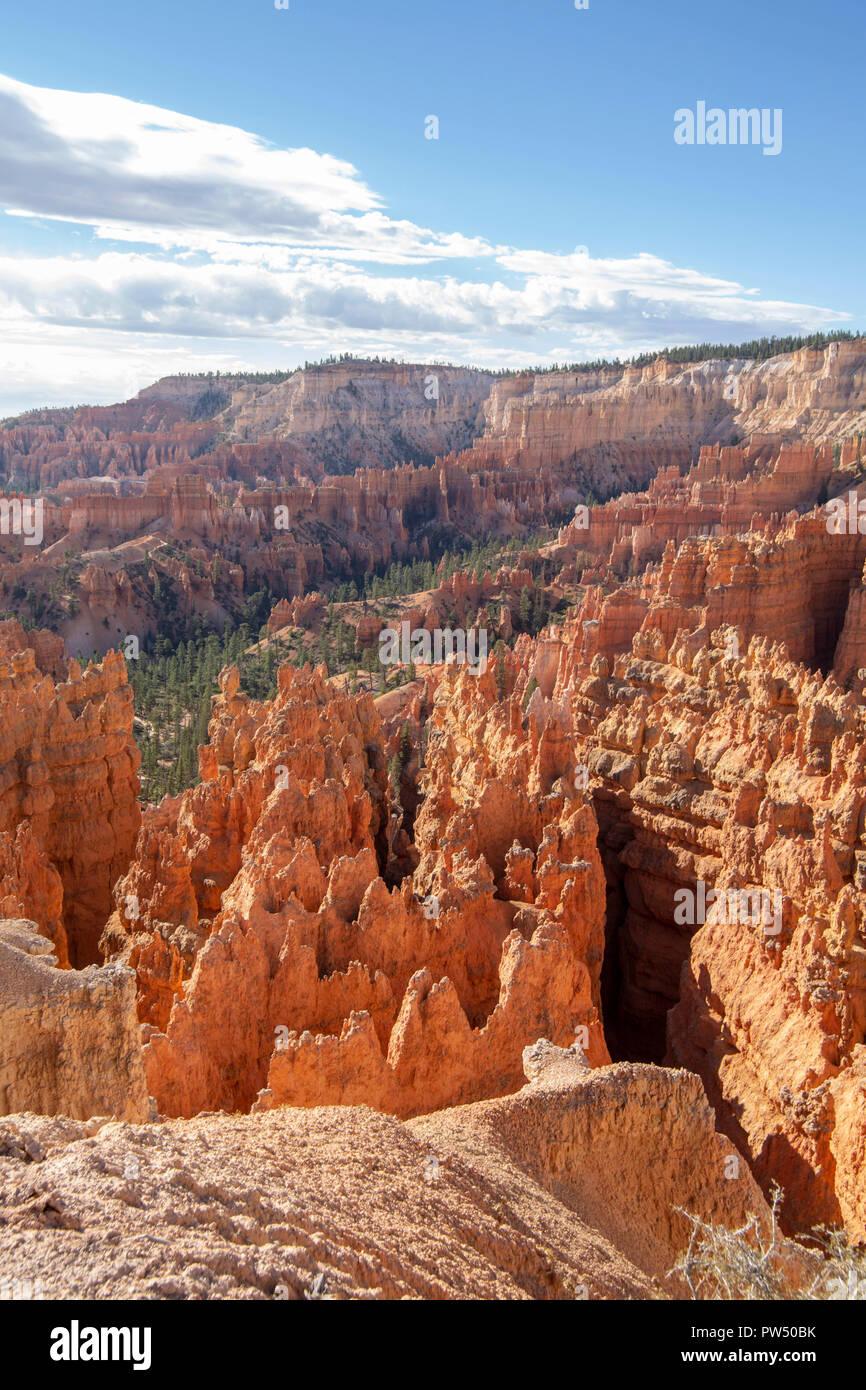 Bryce Canyon in Utah Stockbild