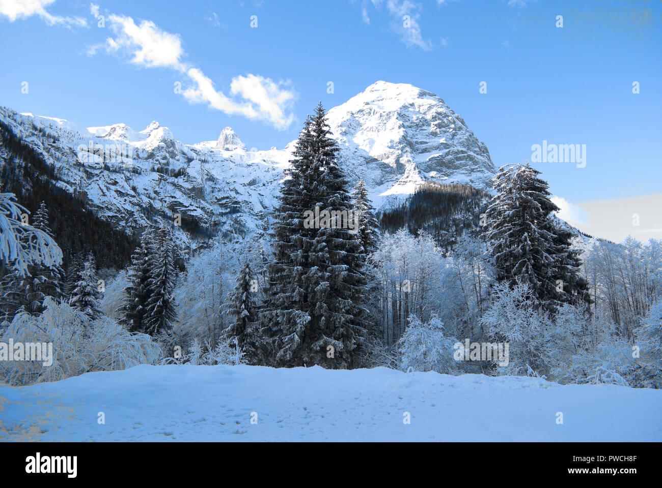 Ein schöner Tag der intensiven Kälte, zu Weihnachten, auf die ...