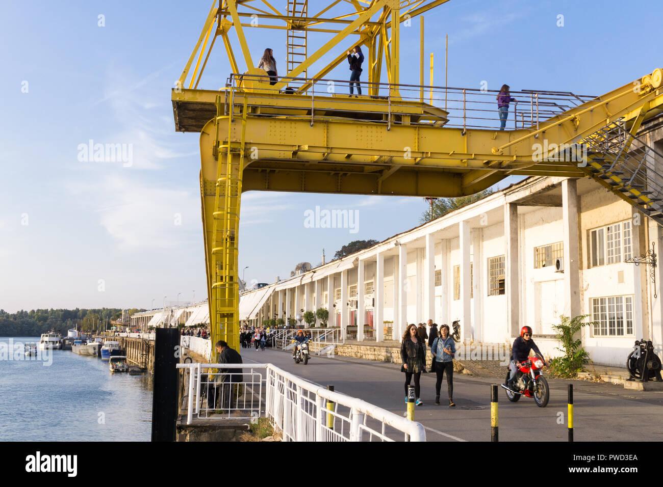 Yellow Crane der Belgrader Hafen auf dem Fluss Sava und der Beton Hala (Beton Halle) im Hintergrund. Stockbild