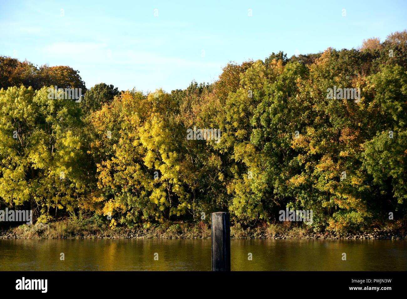 Herbst Wasser Getue Bäume Sonne Stockbild