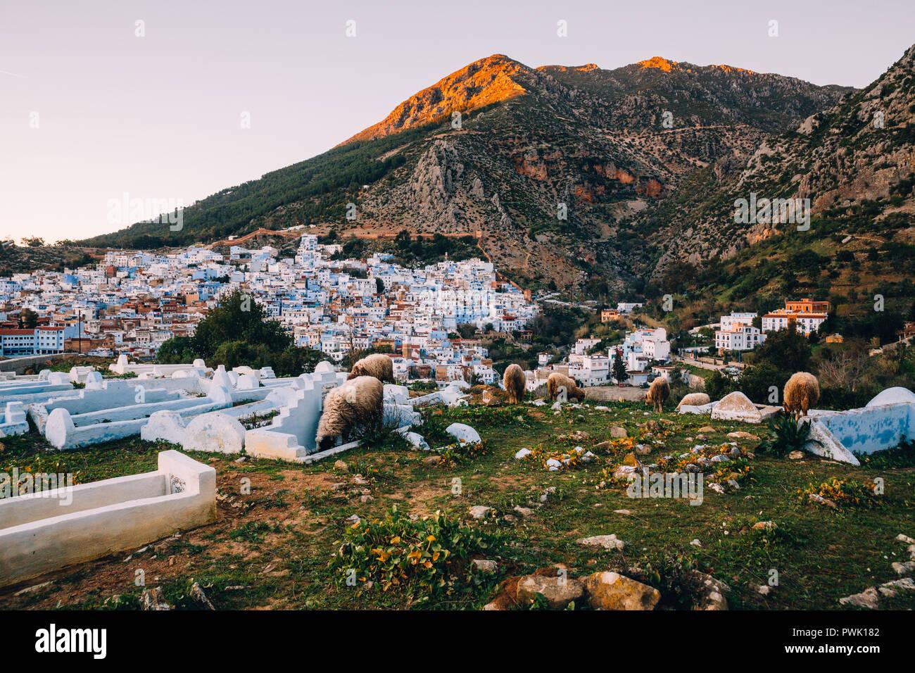 Die Skyline der Stadt Chefchaouen, Marokko, 2018 Stockbild