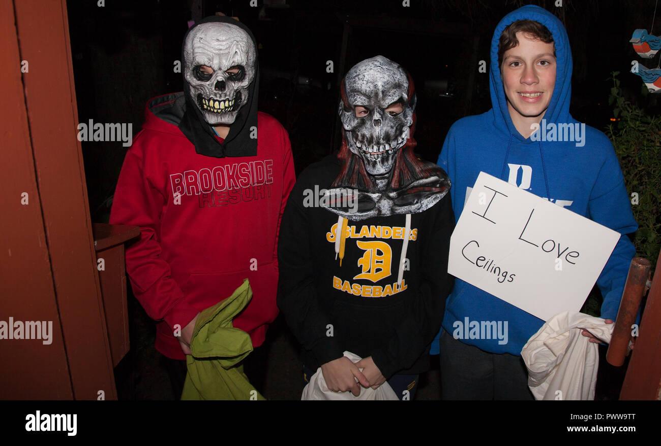 Drei Junge Teenager Im Schadel Masken Und Eine Decke Liebhaber