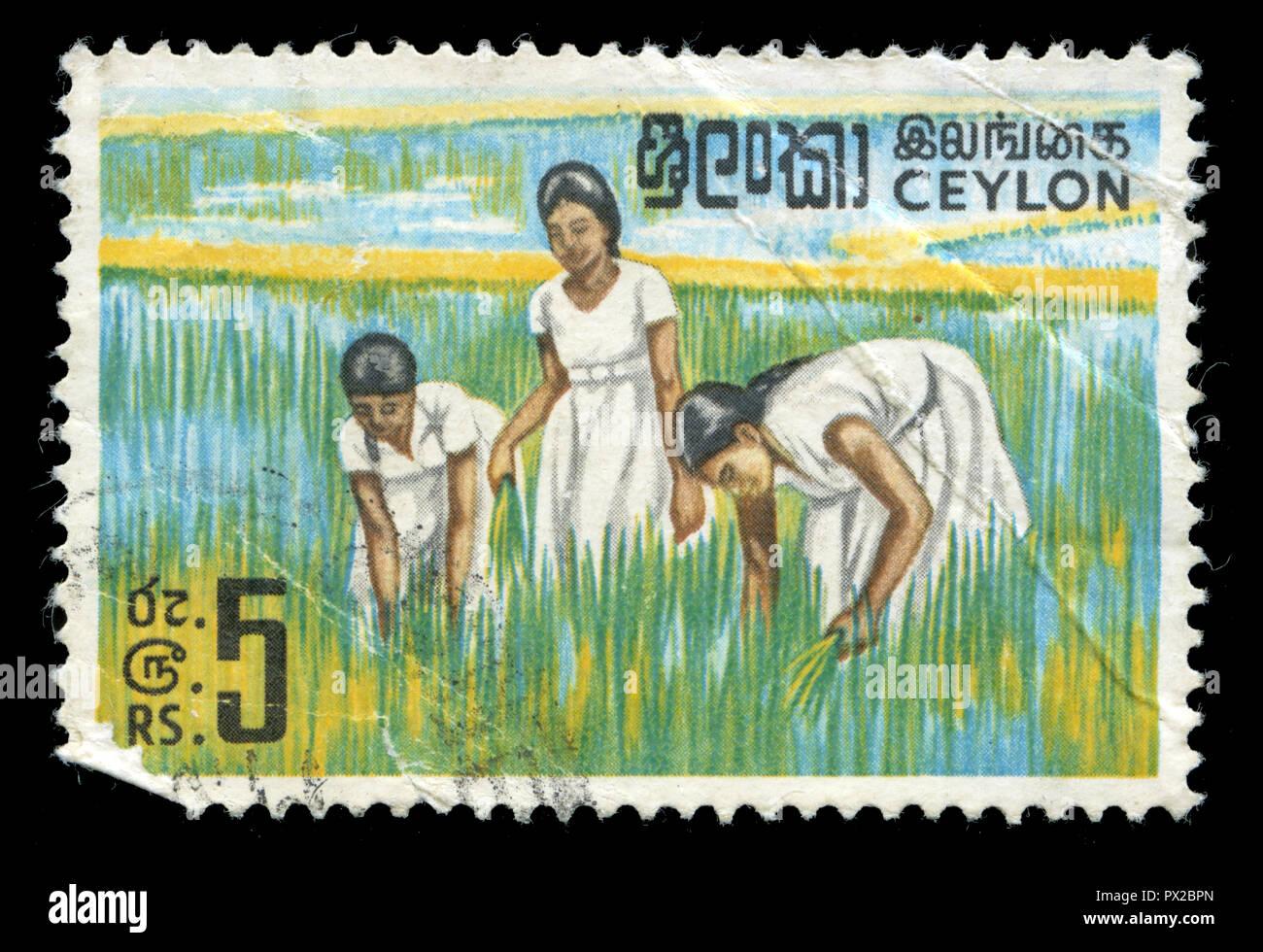 Poststempel Stempel aus Sri Lanka in der endgültigen Ausgabe 1964-72 Serie 1969 ausgestellt Stockfoto