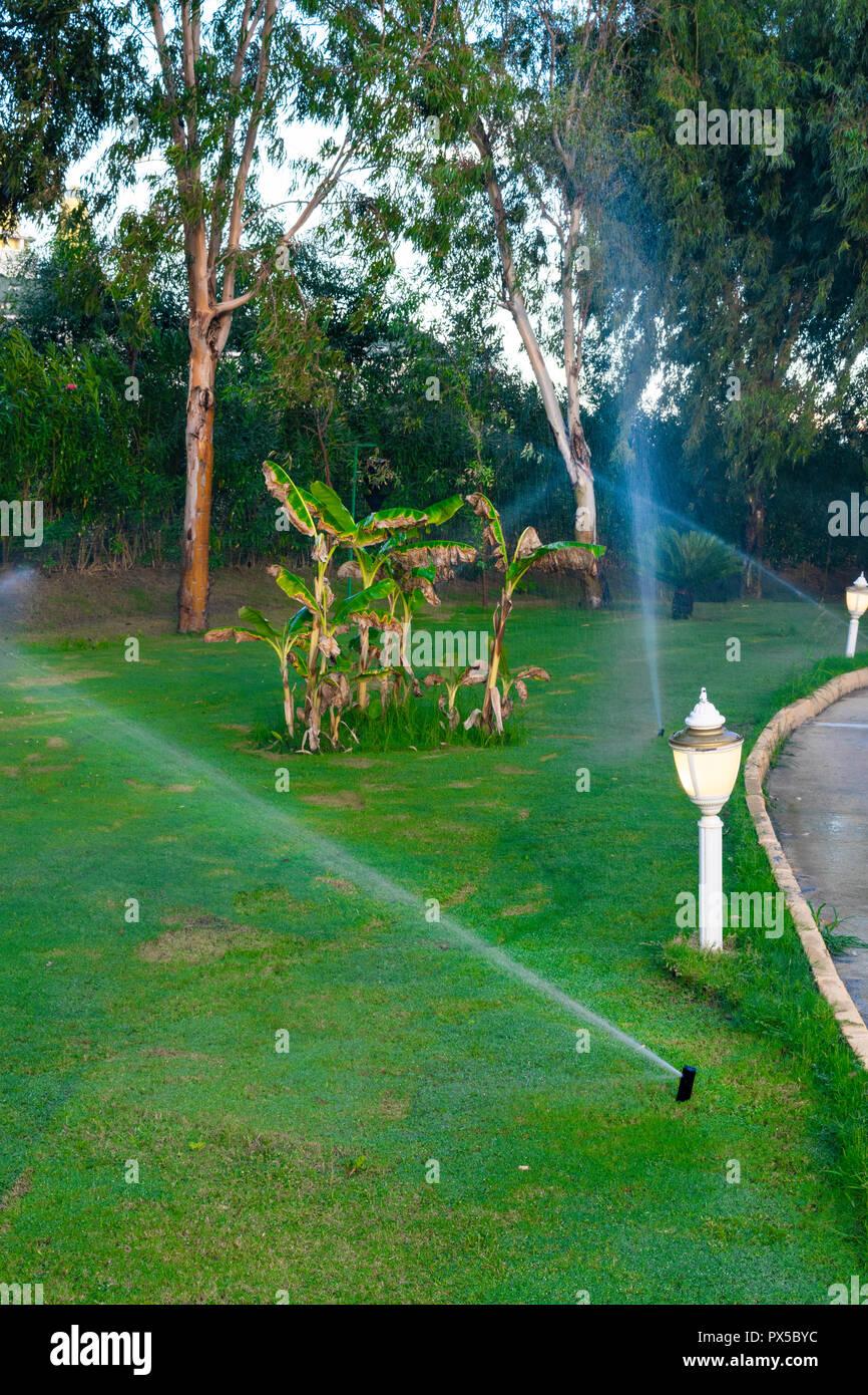 Sprinkleranlage Bewasserung System Ist Die Bewasserung Des Rasens