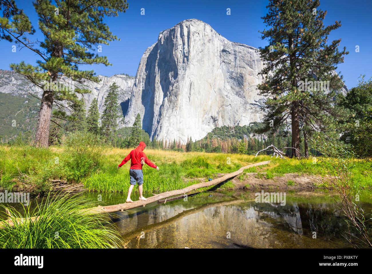 Ein Wanderer ist ausgleichend auf einen umgestürzten Baum mit einem Nebenfluss des Merced River vor der berühmten El Capitan klettern Gipfel im malerischen Yosemite Valley Stockbild