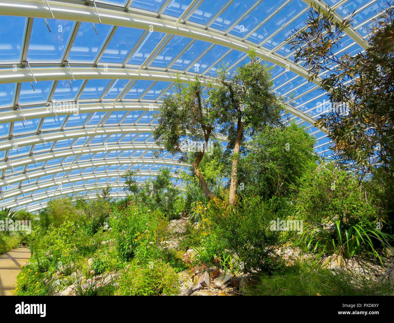 Das Grosse Gewachshaus Gewachshaus Im Botanischen Garten Von Wales