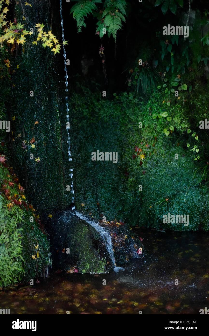 Sengetsusen Kleiner Wasserfall In Ginkaku Ji Tempel Der Silberne