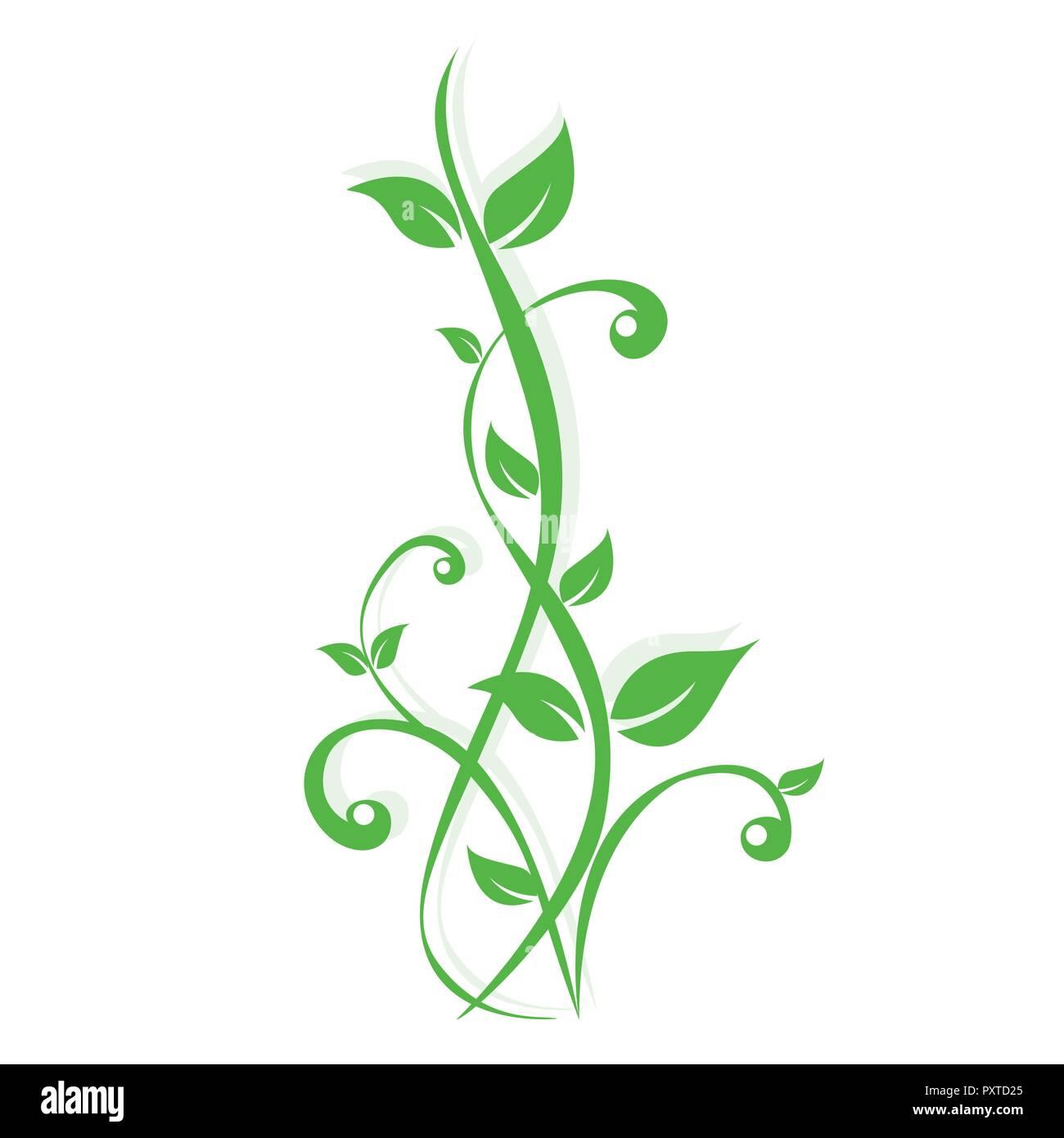Grüne Pflanzen Ranke auf weißem Hintergrund Vektor-illustration EPS 10. Stockbild