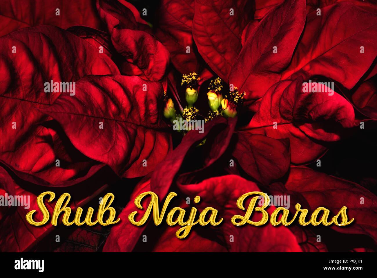 Frohe Weihnachten Hindi.Der Hindi Text Hub Naja Baras Bedeutet Frohe Weihnachten Die