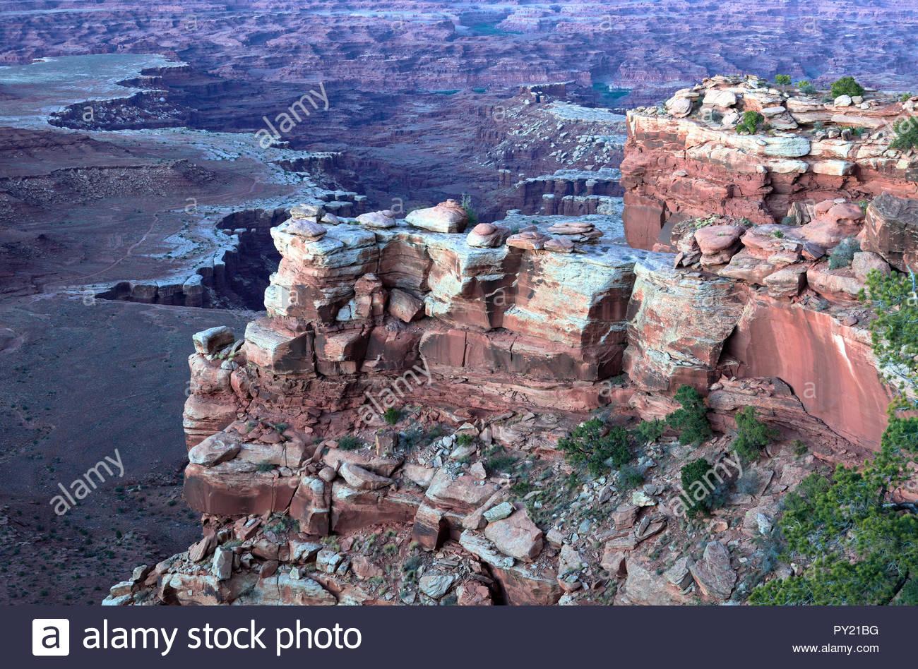 Detailansicht der Abend Canyonlands, Moab, Utah, USA Stockbild