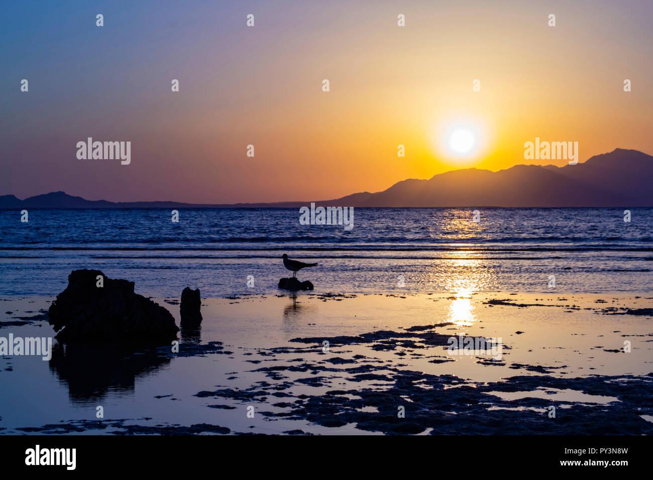 Sunrise auf die Insel Tiran, Saudi-Arabien Stockbild