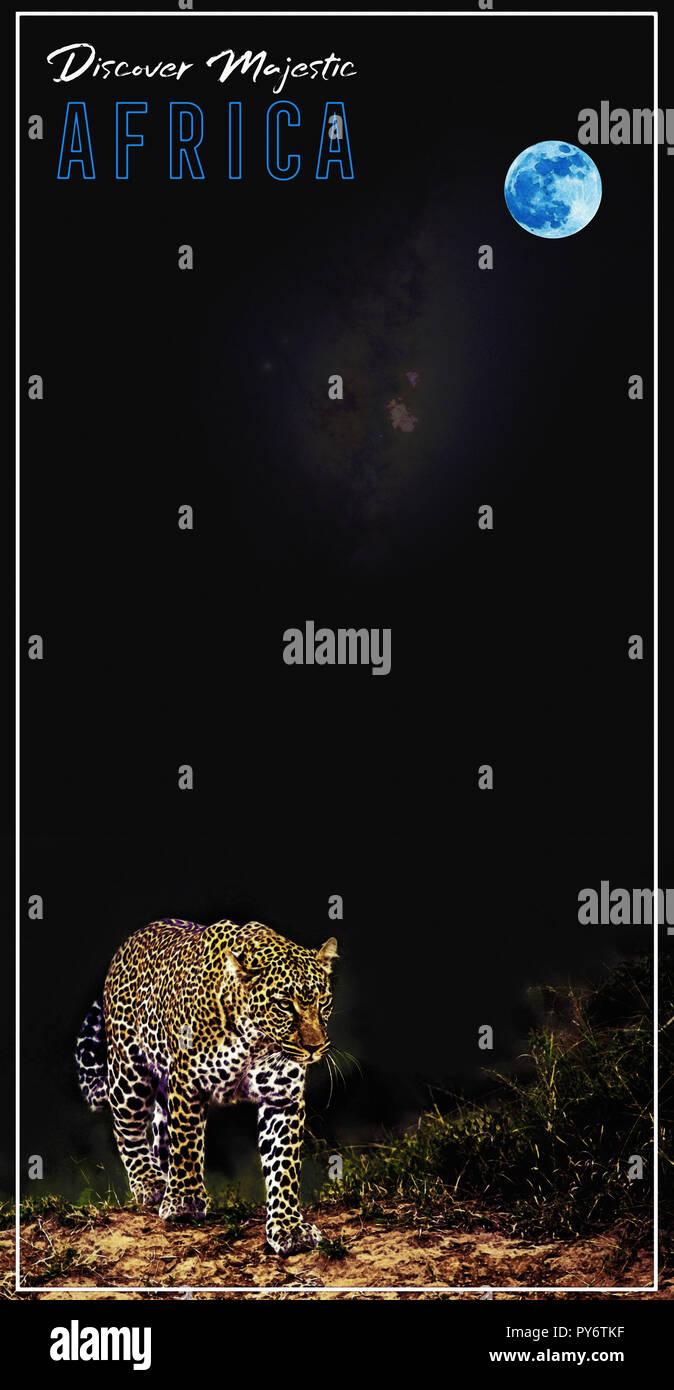 Afrika Reisen Poster v9.jpg-PY 8 FWC Stockfoto