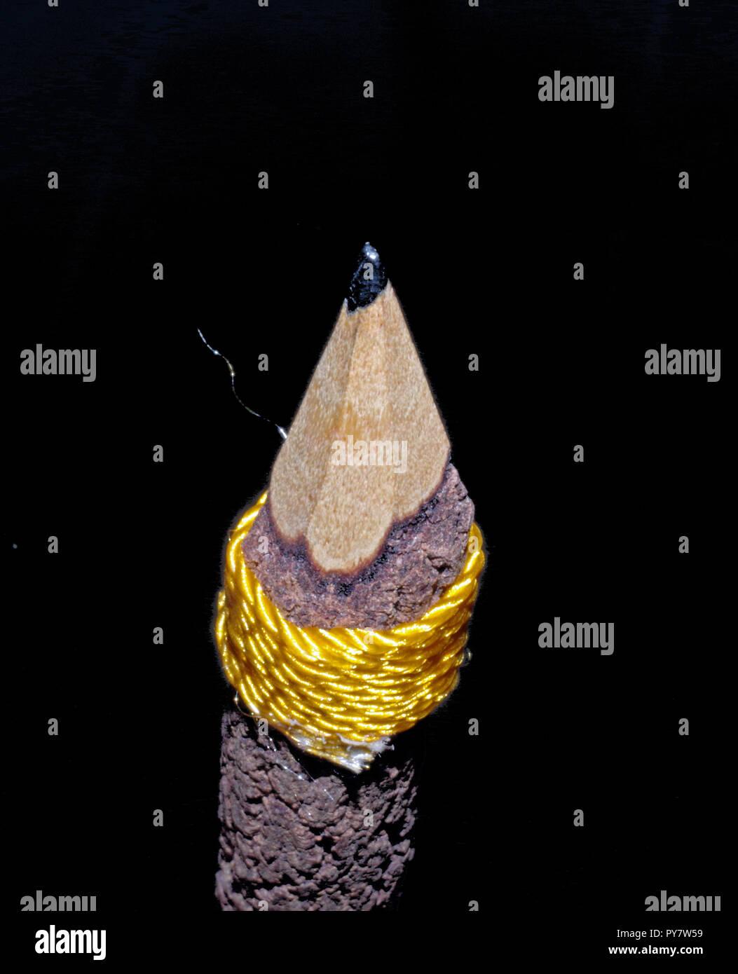 Holz- Bleistift close-up Stockbild