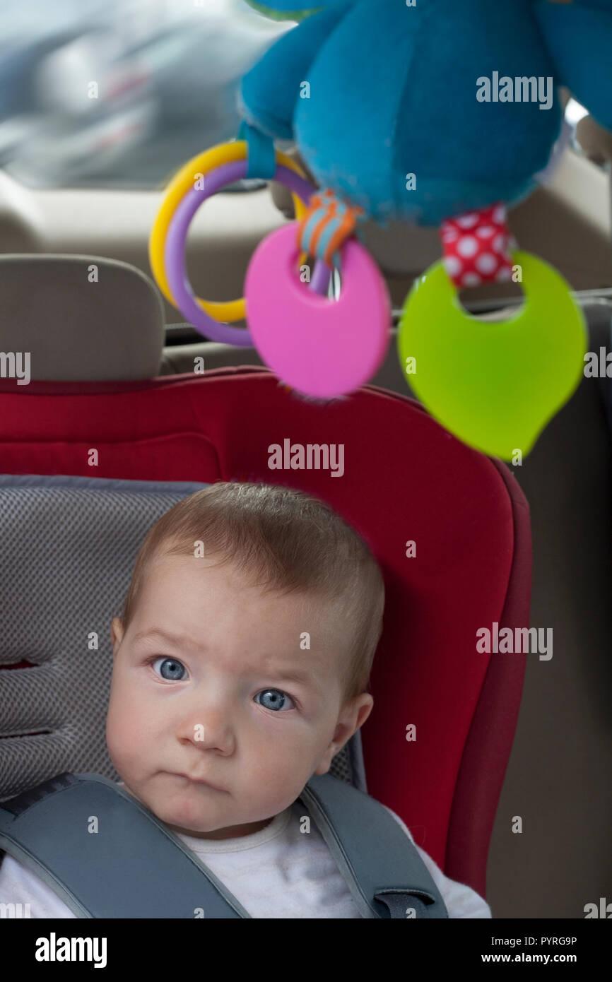 Baby boy in Kindersitz sitzen mit von der Decke hängenden klappern. Er beobachtet toons mit Tablette auf Kopfstütze Stockbild