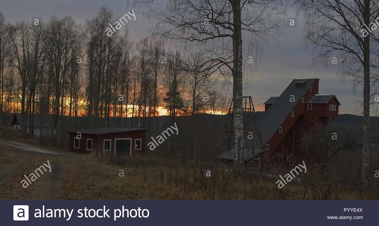 Wintermorgen in Schweden Stockbild