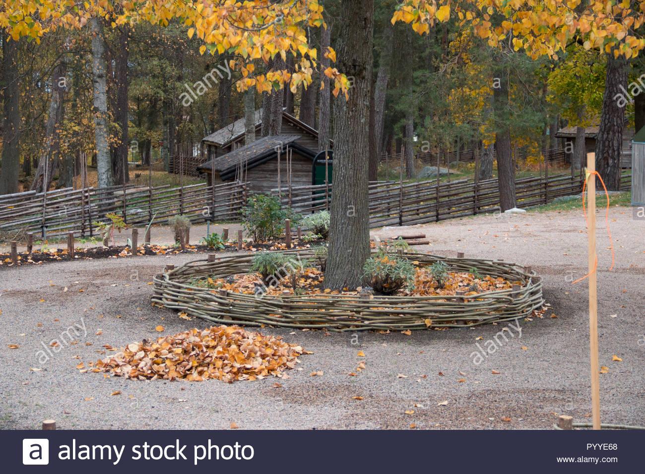 Park im Herbst mit Blättern und einem Holzzaun um einen Baum in Karlstad/Schweden Stockbild