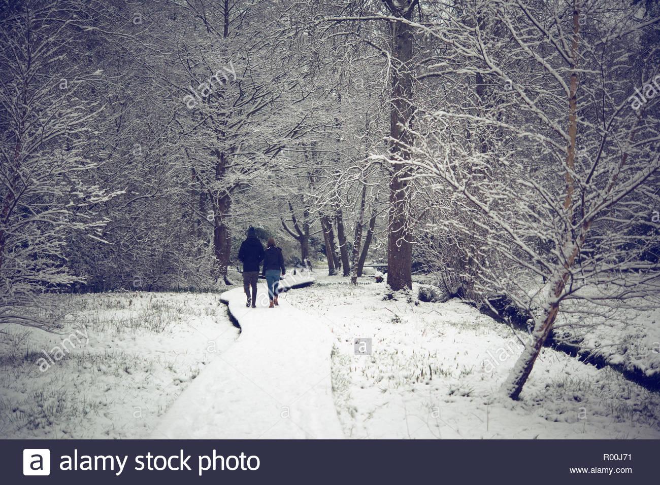 Paar im Park im Winter Stockbild