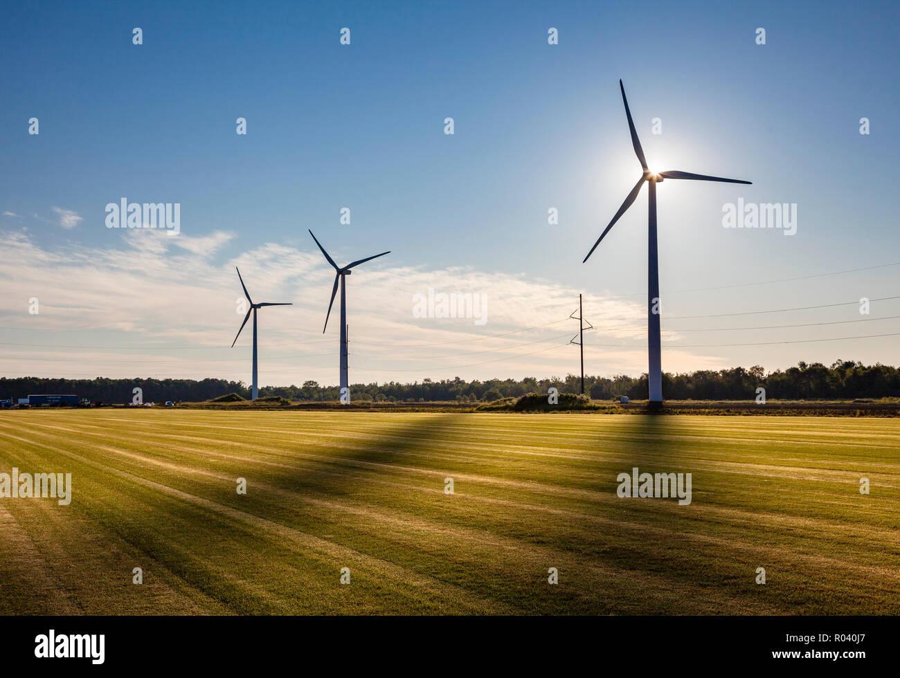 Hintergrundbeleuchtung Windenergieanlagen mit Schatten auf ein grünes Feld. Stockbild