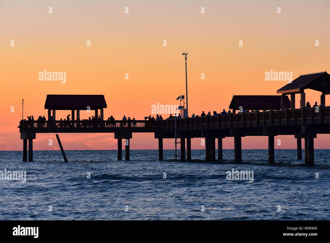 palm gemeinschaft florida bayfront erwachsene