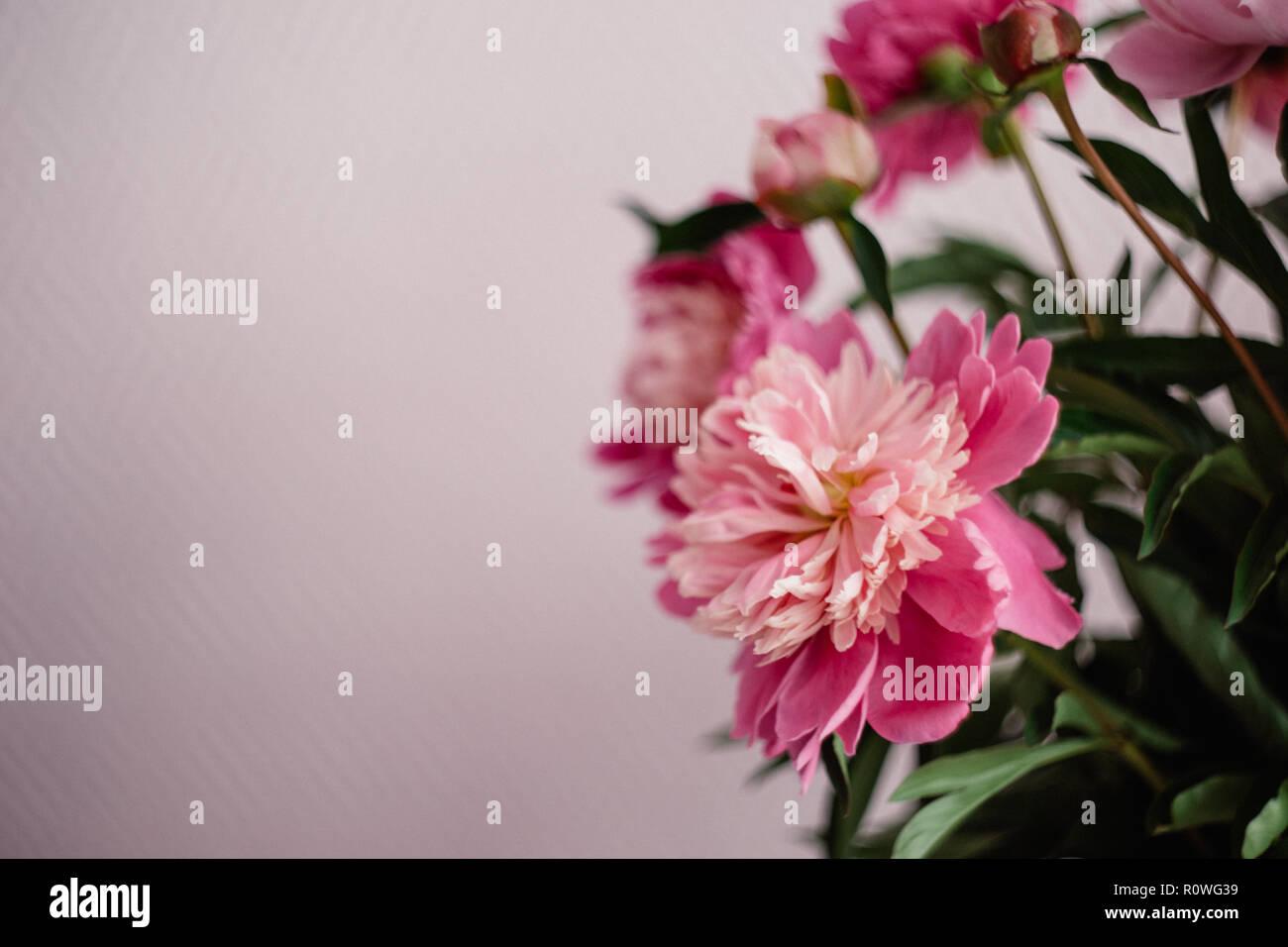 Blumenstrauss Aus Roten Pfingstrosen In Vase Auf Dem Stuhl Hochzeit