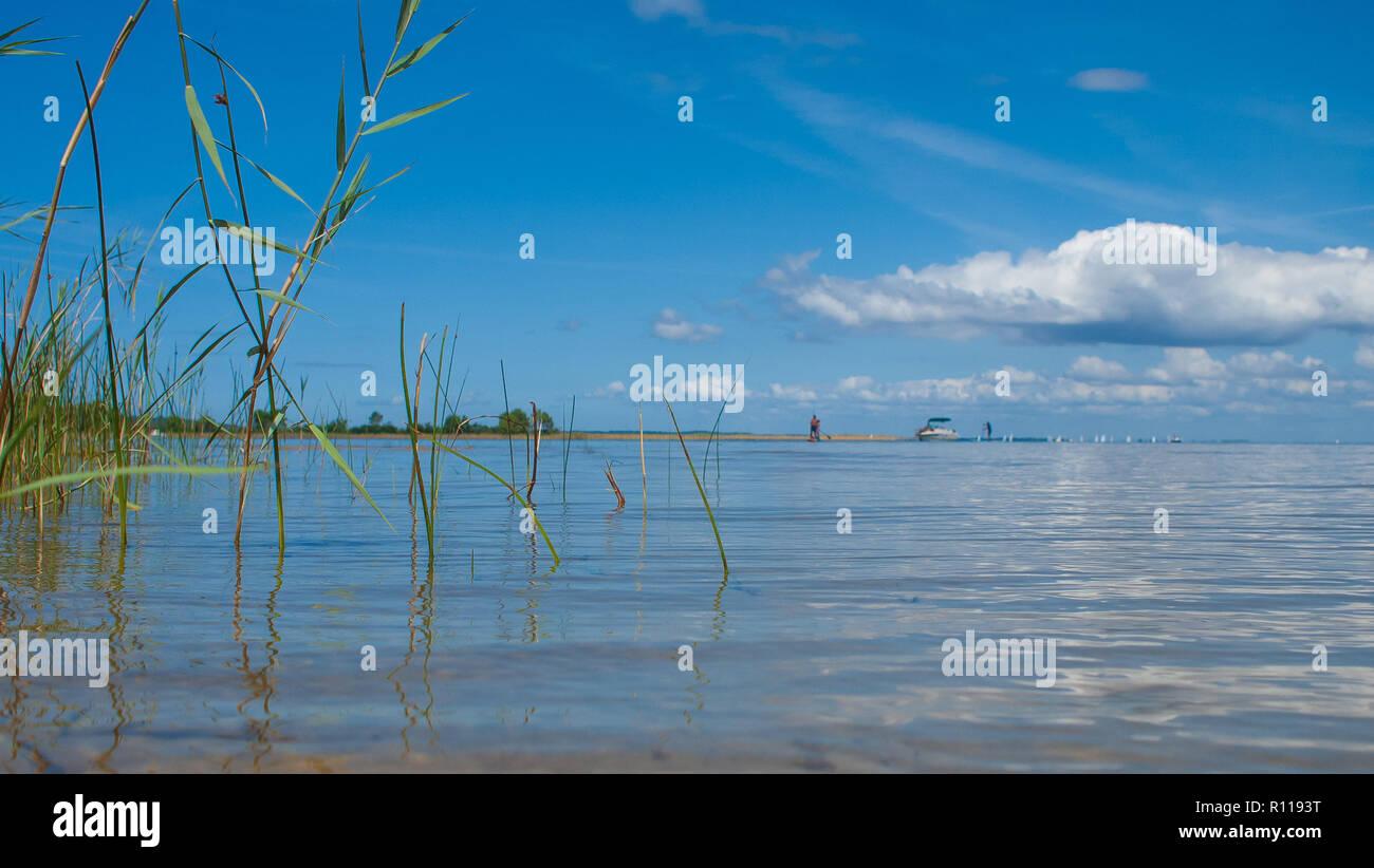 Lac de Biscarrosse, Nouvelle Aquitanien, Landes, Frankreich Stockbild